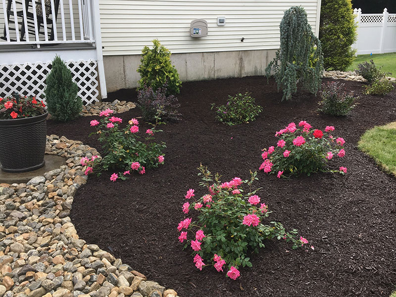 Hattoy's residential landscaping services, beautiful flower beds
