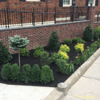 Hattoy's professional landscaping services commercial and residential