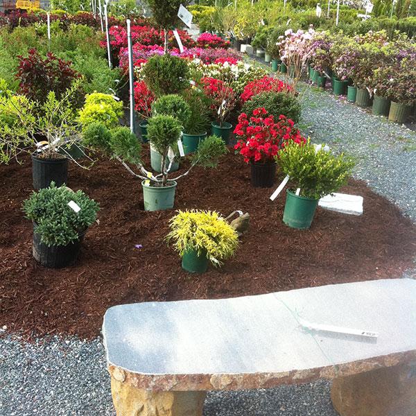 Hattoy's Garden Center Stone Bench