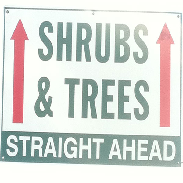Hattoy's carries shrubs & trees