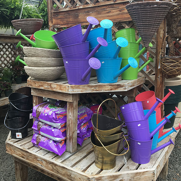 Hattoy's Garden Center in stock